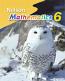 Nelson Mathematics 8 Solutions Manual
